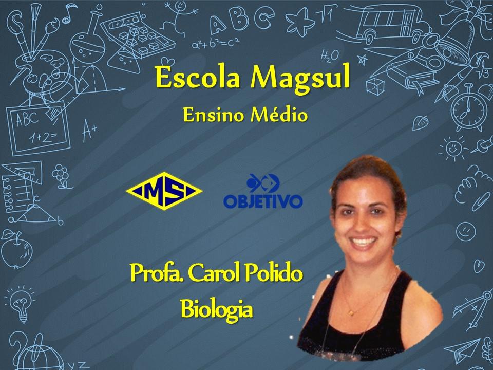 Profª Carol Polido
